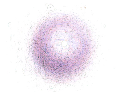 The copulogram as a means of visualizing the social network