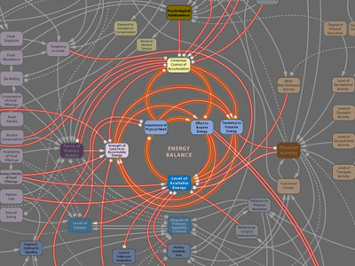 Visualcomplexity Obesity System Influence Diagram